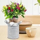 iShine Blumentopf Vintage Blumenvase aus Metall Pflanzen Vase mit Griff Schmiedeeisen 8cmx14.5cm Shabby Chic Vase Ländlicher Stil Vintage Eisenvase Deko für Garten-Weiß