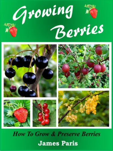 growing-berries-how-to-grow-preserve-strawberries-raspberries-blackberries-blueberries-gooseberries-