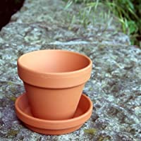 Weston Mill Pottery Small terracotta plant pots and saucers(pack of 10) 80mm diameter x 70mm high