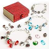Red Bomb - Bijoux de Charme Bracelet Plaqué Argent avec Chaîne à Serpent DIY avec...