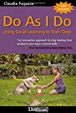 Do As I Do: Using Social Learning to Train Dogs