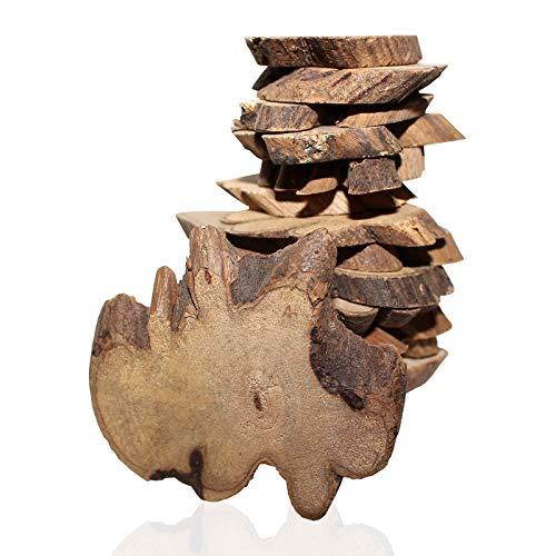 Holzscheiben (180 Stück - 500g) - Rustikale Naturholz Rohlinge (2-5.5 cm) - Holzstamm Scheiben Baumscheiben mit Baumrinde für Holz Handwerk, Hochzeits Mittelstück, Basteln und Deko (5mm Dicke)