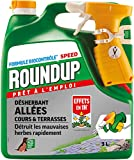 Roundup Désherbant Allées Cours et Terrasses Prêt à l'emploi, 3L
