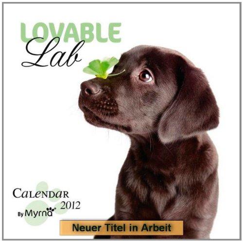 Lovely Labs 2013 - Labrador Retriever - Original BrownTrout-Kalender - Myrna -