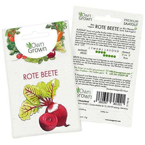 e Beete Samen (Beta vulgaris), Rote Rüben Samen zum Anbauen, Rote Bete Saatgut für rund 80 Rote Beete Pflanzen ()