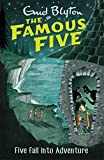 Famous Five: Five Fall Into Adventure: Book 9 (Famous Five series)
