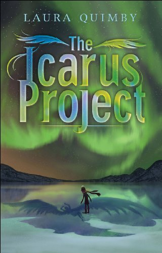 The Icarus Project (English Edition)