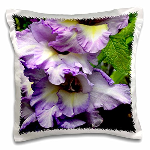 ET Photography Roses - A beautiful pink garden rose with petals like a fancy dress - 16x16 inch Pillow Case (pc_165348_1)