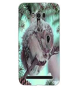 ColourCraft Cute squirrel Design Back Case Cover for ASUS ZENFONE GO