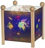 Magische Laterne Regenbogenfisch von Trousselier - Gehäuse natur