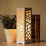 Shag Night Lamp for bedroom and Living Room with Three Type of Color Change Light