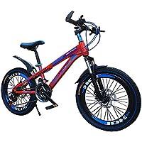 RFV Bicicleta de Montaña, Bicicleta, Freno Doble de Disco de 20/22/