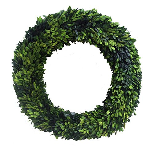 Mills Floral Boxwood Country Manor Round Wreath, 24-Inch by Mills Floral Floral Manor