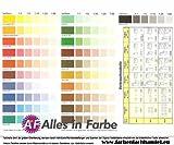 Pufas Fix2000 Vollton- und Abtönfarben 250ml Schwarz 904