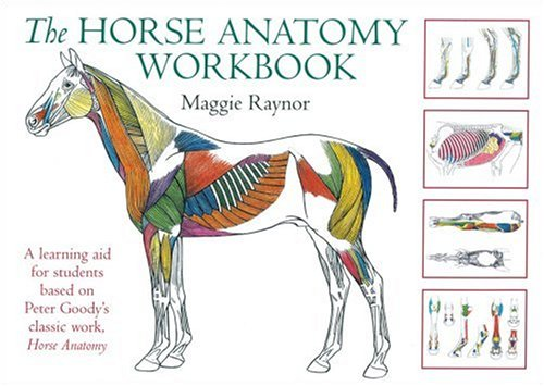 The Horse Anatomy Workbook: A Learning Aid for Students Based on Peter Goody's Classic Work, Horse Anatomy (Allen Student) por Maggie Raynor
