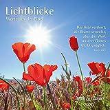 Lichtblicke 2020 - Broschürenkalender - Wandkalender - mit herausnehmbarem Poster und Bibelzitaten - Format 30 x 30 cm: Worte aus der Bibel -