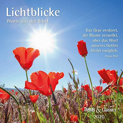 Lichtblicke 2020 - Broschürenkalender - Wandkalender - mit herausnehmbarem Poster und Bibelzitaten - Format 30 x 30 cm: Worte aus der Bibel
