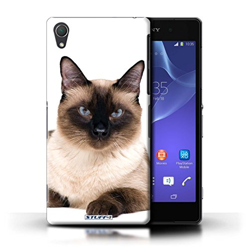 Kobalt® Imprimé Etui / Coque pour Sony Xperia Z2 / Scottish Fold conception / Série Espèces de chats Siamois