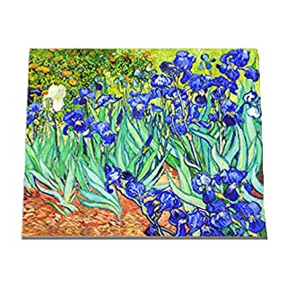 Wowdecor Paint by Numbers Kits for Adults Kids, DIY Number Painting - Van Gogh Iris Flowers 40 x 50 cm - New Stamped Canvas (Framed)