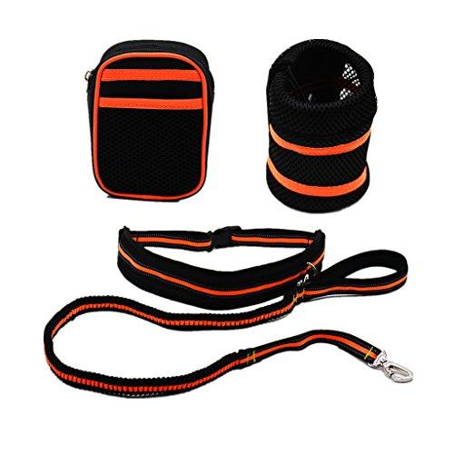 Elastische Nylon Hundeleine + Jogginggurt Bauchgurt + Gürteltasche + Wasserflasche Tasche - Orange