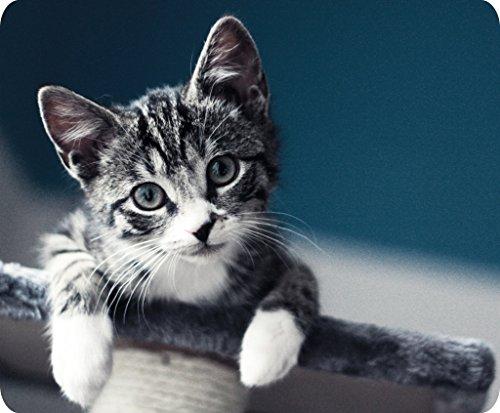 Ucmda gattino grigio antiscivolo in gomma spessa tappetino per mouse per Gaming ufficio con design rettangolare 22,9x 19,1cm