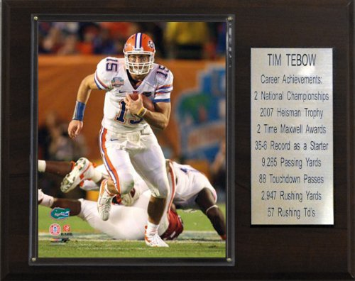 C & I Collectables NCAA Football Tim Tebow Florida Gators Karriere Stat Plaque -