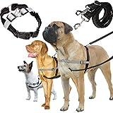 Hundegeschirr und Leine Set, Einstellbare & Dauerhaft & Stabil Brustgeschirr Nylon mit Stahlklauenverschluss Hundeleine für Kleine, Mittlere und Große Hunde Perfekt für Walking Laufen und Training