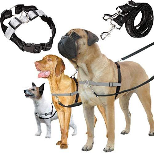 Hundegeschirr und Leine Set, Einstellbare & Dauerhaft &… | 00727955960349