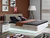 RDNL242-T30 Rondino 140 x 200 Sandeiche Nb. / weiß Bett Jugendbett Gästebett Einzelbett Doppelbett