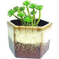 Dosige Maceta de Cerámica con Diseño de Cactus, Decoración de Escritorio, hogar, Jardín