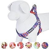Best Puppia harnais pour chien pour les voitures - Blueberry Pet Harnais pour chien réglable Motif floral Review