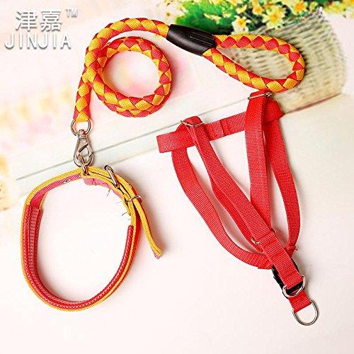 1,5 M Dreiteiliges gewebte Nylon Leine Hund Spot Großhandel Seil Taidijinmao Seil, Rot Gelb 3 Stück, L-2,5Cm/1,5 Meter langes Band Breite (Gewebt Spot)