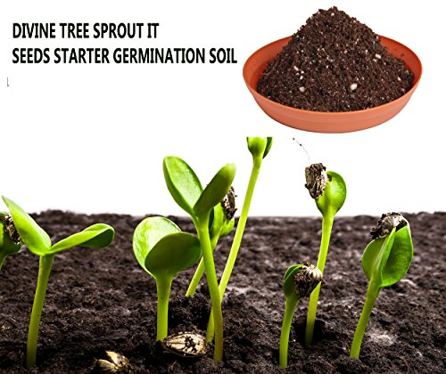 DIVINE TREE Sprout It Seeds Starter Organic Potting Soil Mix for Potted Plants Seed Germination (900g)
