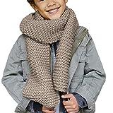 Phildar Kit de Tricot Pack conçu pour Tricoter Une Echarpe Enfant Mixte Phil Nébuleuse - Accessible débutant - Pelotes (41% Laine) + Aiguille à Laine + Modèle Offert (Coloris Biche)