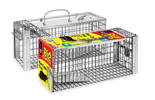 The Big Cheese Rat Cage Trap (Large, Humane, Live-Catch Trap, Use Indoors and Outdoors in Gardens)