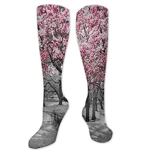 ZENGYAN Blossoms in Central Park Cherry Bloom Trees Compression Sock for Women & Men - Best for Running, Athletic Sports, Flight Travel 19.68