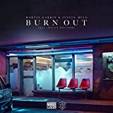 Image of Burn Out