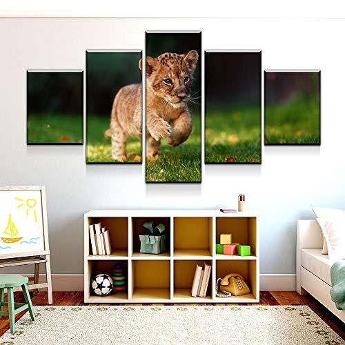 adgkitb canvas 5 Stück Wandkunst Bild Löwenjunges Leinwand Set Für Wohnzimmer Gedruckt Auf Leinwand