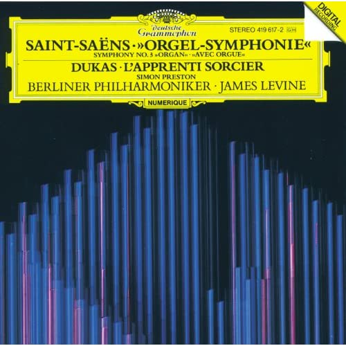 "Saint-Saëns: Symphony No.3 In C Minor, Op.78 ""Organ Symphony"" - 1. Adagio - Allegro moderato - Poco adagio"