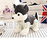 #3: NB phoenix husky Dog Soft Toy 40cm, Cute plush kids animal toy | Gift Wrap and Message Available.