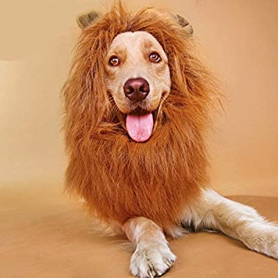 Vivifying Lion Mane Wig, Adjustable Pet Costume with Ears for Dog (Brown)