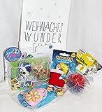 110611 Kinder Nikolaus Wundertüte Geschenk Set 3 - 7 Jahre Weihnachtsgeschenk mit Minion Blindbag, Leuchtring, Littlest Pet Shop, Leuchtball, Schlüsselanhänger in Weihnachts Wundertüte
