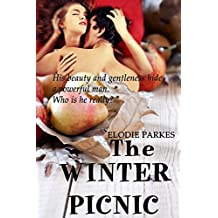 The Winter Picnic