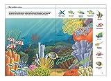 Stickerbuch Meere und Berge - 2