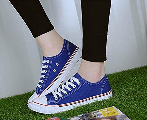 Wealsex Sneakers Basses Femme Chaussures Basket Toile Confort Bleu