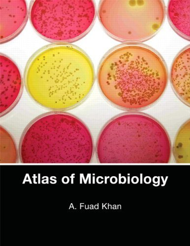 Atlas of Microbiology by A. Fuad Khan (2009-11-22)