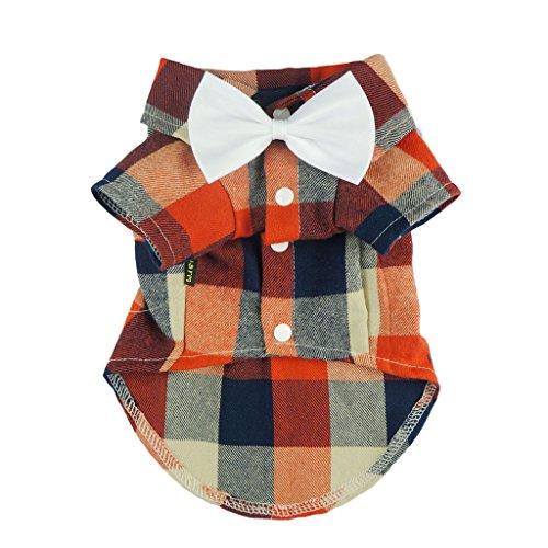 Fitwarm Elegant Casual Hund Plaid Shirt Sanfte Western Shirt Hochzeit Kleidung Pet Shirt + Hochzeit Fliege, XXL (Chest21 Neck14), Orange - Elegante Plaid