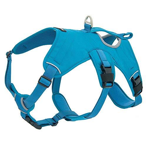 Best Pet Supplies Voyager Hundegeschirr, verstellbar, mit 3M-Reflektor-Technologie, Large, Turquoise (Control)
