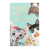 Hallmark Dankeskarte, mit Katzenmotiv, mittel Sehr viel