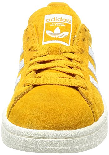 adidas Campus, Chaussures de Fitness Homme, Turquoise Jaune (Tactile Yellow F17/ftwr White/chalkwhite)